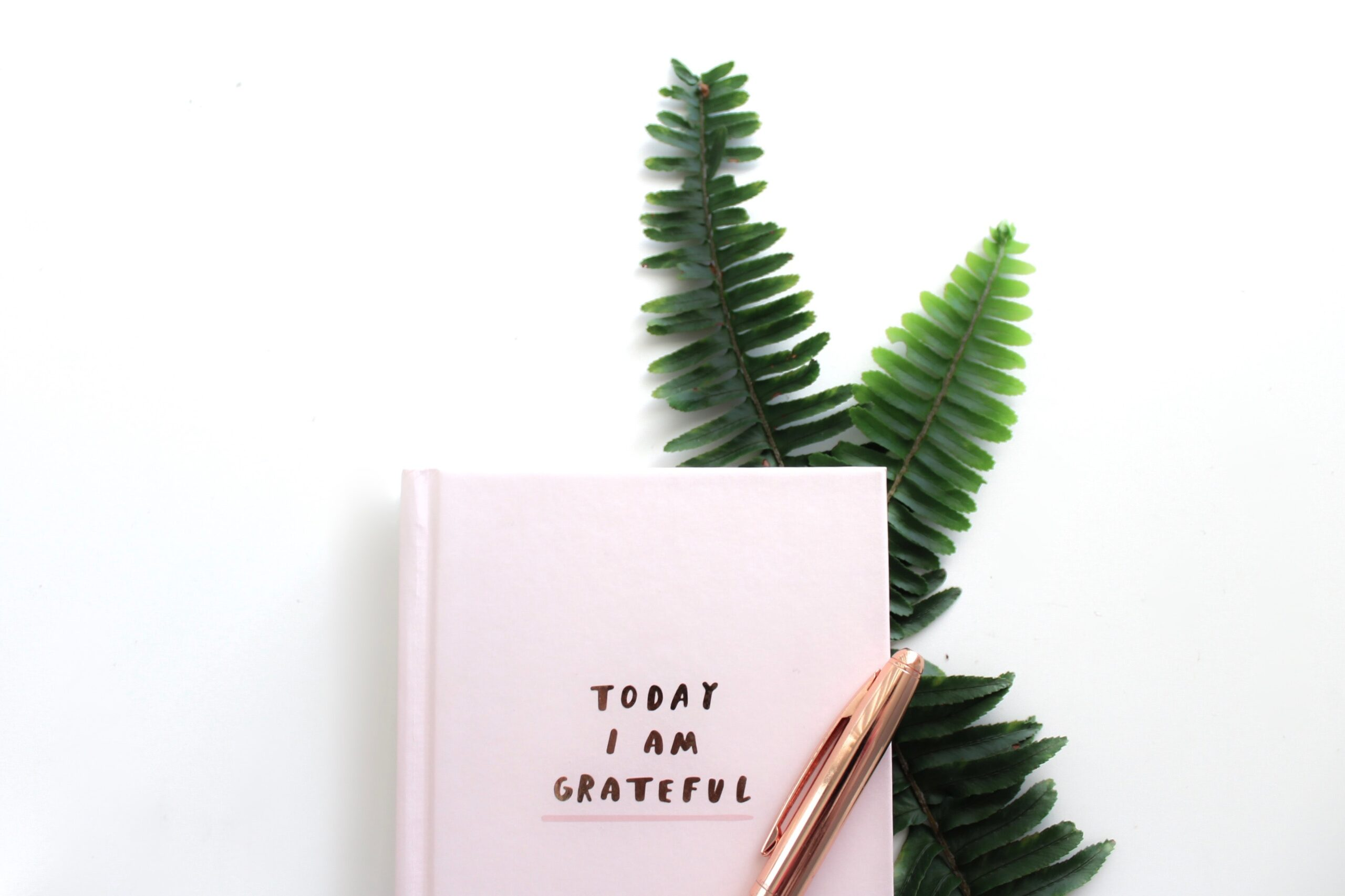 Best Gratitude Quotes Affirmations