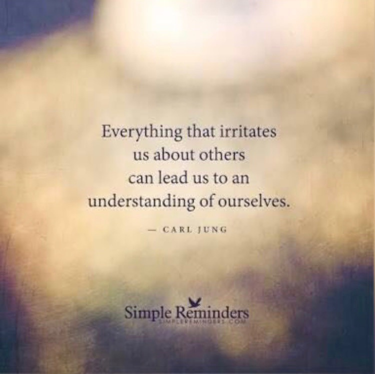 Everything that irritates us about others can lead us to an understanding of ourselves.  Carl Jung
