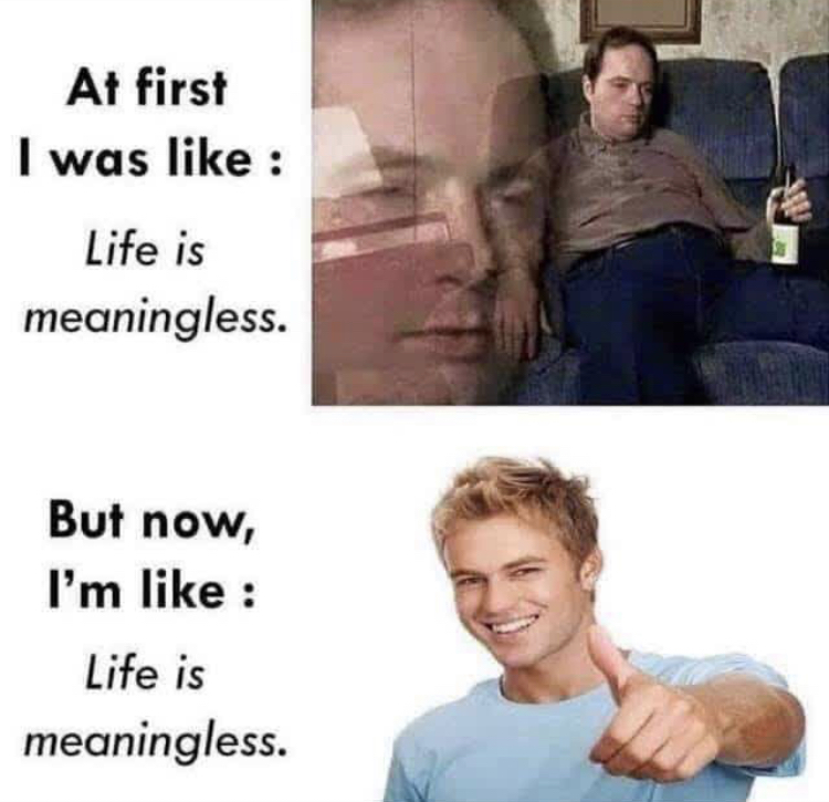 i was like: life is meaningless. but now i'm like: life is meaningless. spiritual memes woke memes