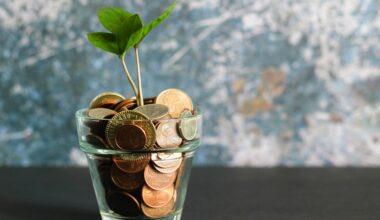 money words of wisdom financial freedom conscious living